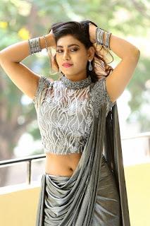 Priyanka Augustin Hot Navel Show Pics In Gray Color Saree
