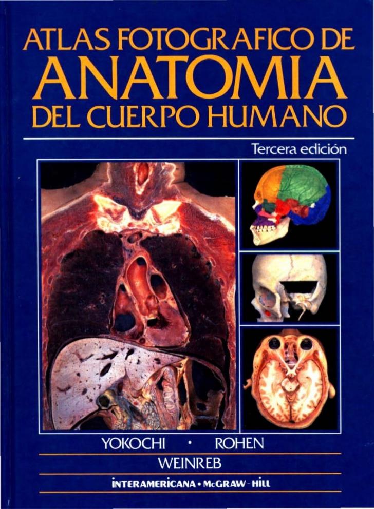Libros en PDF de Kinesiología y Fisioterapia: Atlas Fotografico de ...
