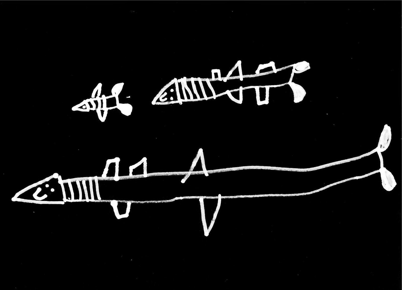 Tiburones estilo naif dibujados en trazos blancos sobre fondo negro ©Selene Garrido Guil