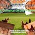 Huevos frescos de granja, de la comarca de  Los Pedroches