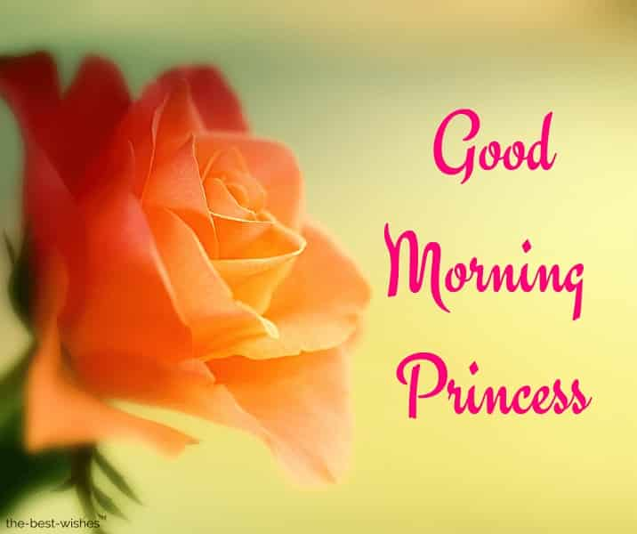 very good morning princess