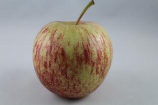 Purés de fruta até 1 ano de idade: dicas de preparação para os pais