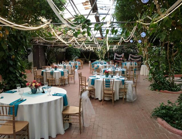 Best Phoenix Wedding Venues boojum tree hidden garden