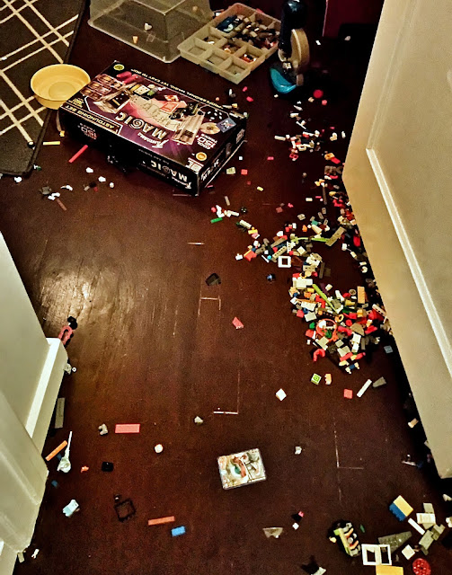 lego mess done by the dog