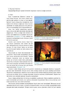 11. Sınıf Coğrafya Ders Kitabı Cevapları Gün Yayınları Sayfa 16