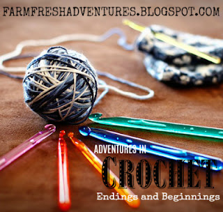 Adventures in Crochet ~ Endings and Beginnings