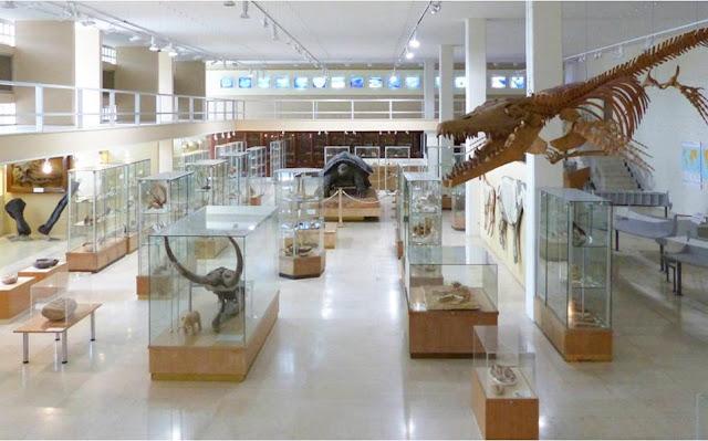 Τα άγνωστα μουσεία του Πανεπιστημίου Αθηνών