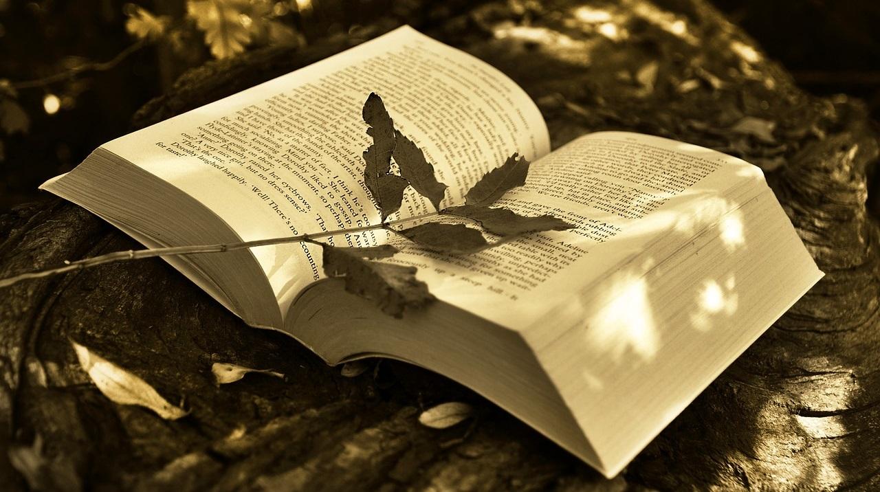 Książkowy październik, czyli podsumowanie miesiąca