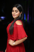 Poorna in Maroon Dress at Rakshasi movie Press meet Cute Pics ~  Exclusive 120.JPG