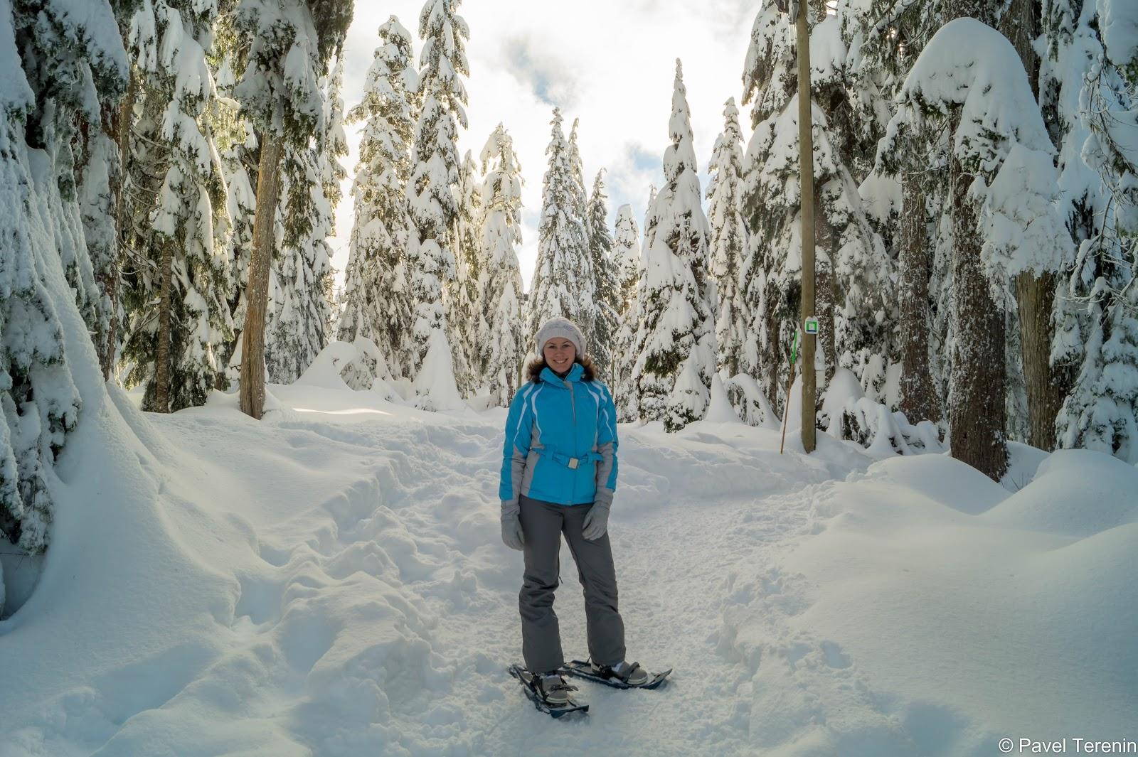 Надев снегоступы, мы направились исследовать запутанные тропы снежного леса.