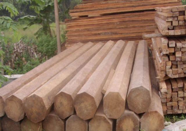 131767_kayu-glugu-dari-pohon-kelapa_641_452