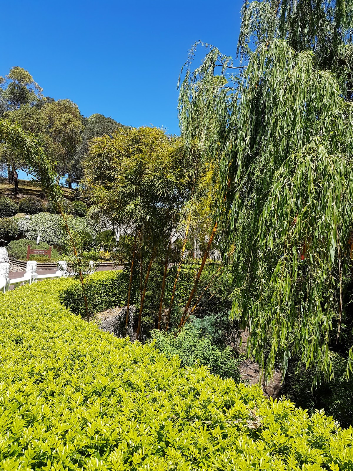 how to get to nan tien temple from wollongong station