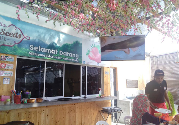 Restoran The 200 Seeds by Abang Strawberry