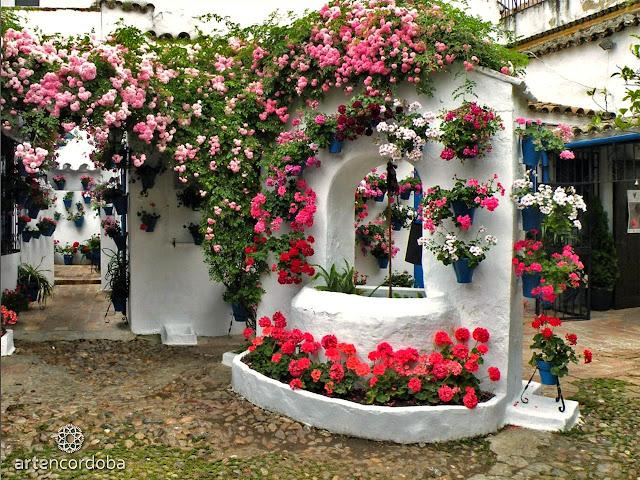 P tios cordobeses decora o e inven o for Fotos de patios