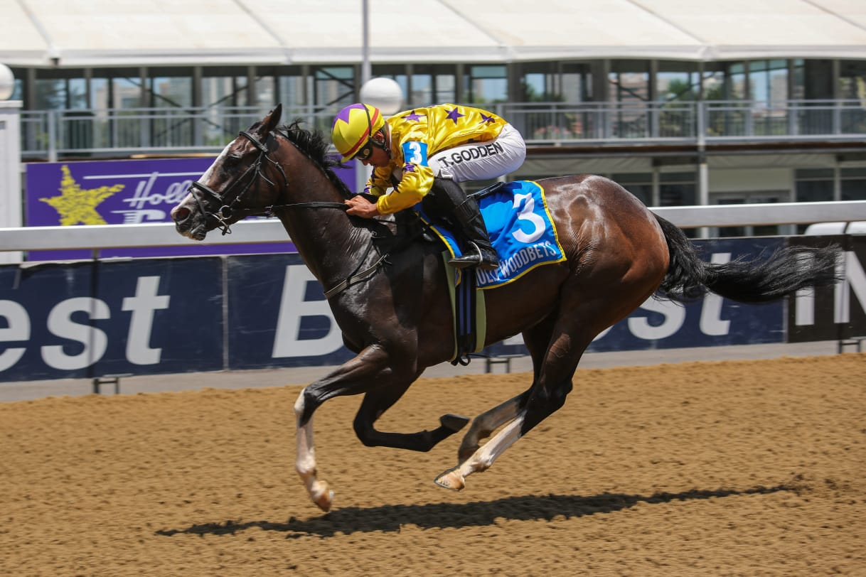 GAIL FORCE ridden to victory at Hollywoodbets Greyville Racecourse by Tristan Godden. Horse Racing