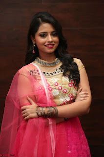 Geethanjali sizzles in Pink at Mixture Potlam Movie Audio Launch 004.JPG