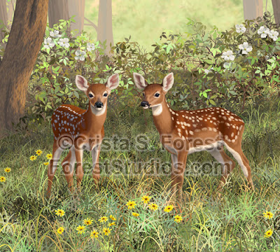 http://pixels.com/featured/whitetail-deer-twin-fawns-crista-forest.html