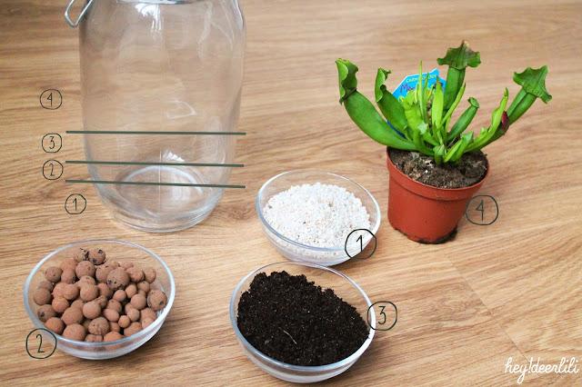 hey deer lili diy terrarium facile simple terrarium. Black Bedroom Furniture Sets. Home Design Ideas