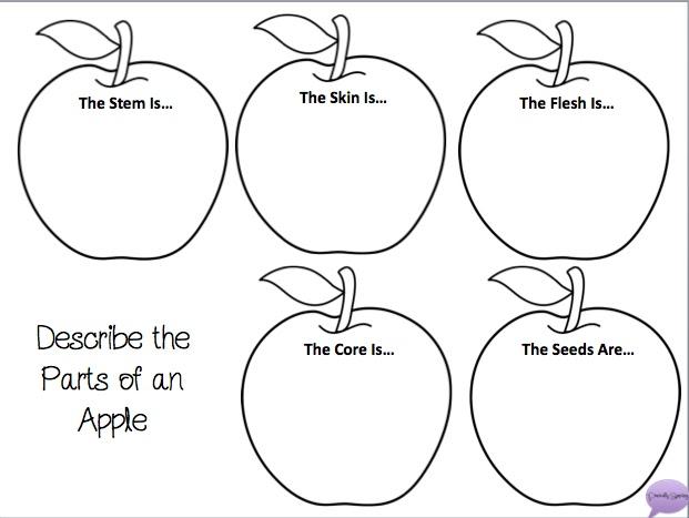 The 5 Senses of Fall