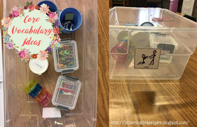 Core Vocabulary Tubs/ Activities for Special Education