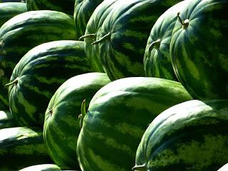 pixabay.com/en/melons-water-melons-fruit-green-197025/