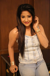 Actress Sakshi Agarwal Pictures in Jeans at Ka Ka Ka Po Movie Press Meet  0004.jpg