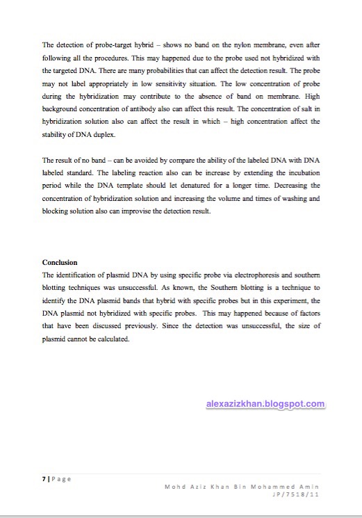 Biological Molecules Lab Report Essay Sample