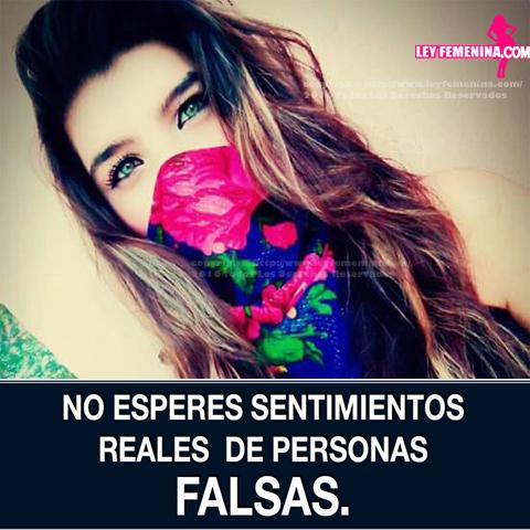 Ley Femenina Frases E Indirectas Para Mujeres Imágenes