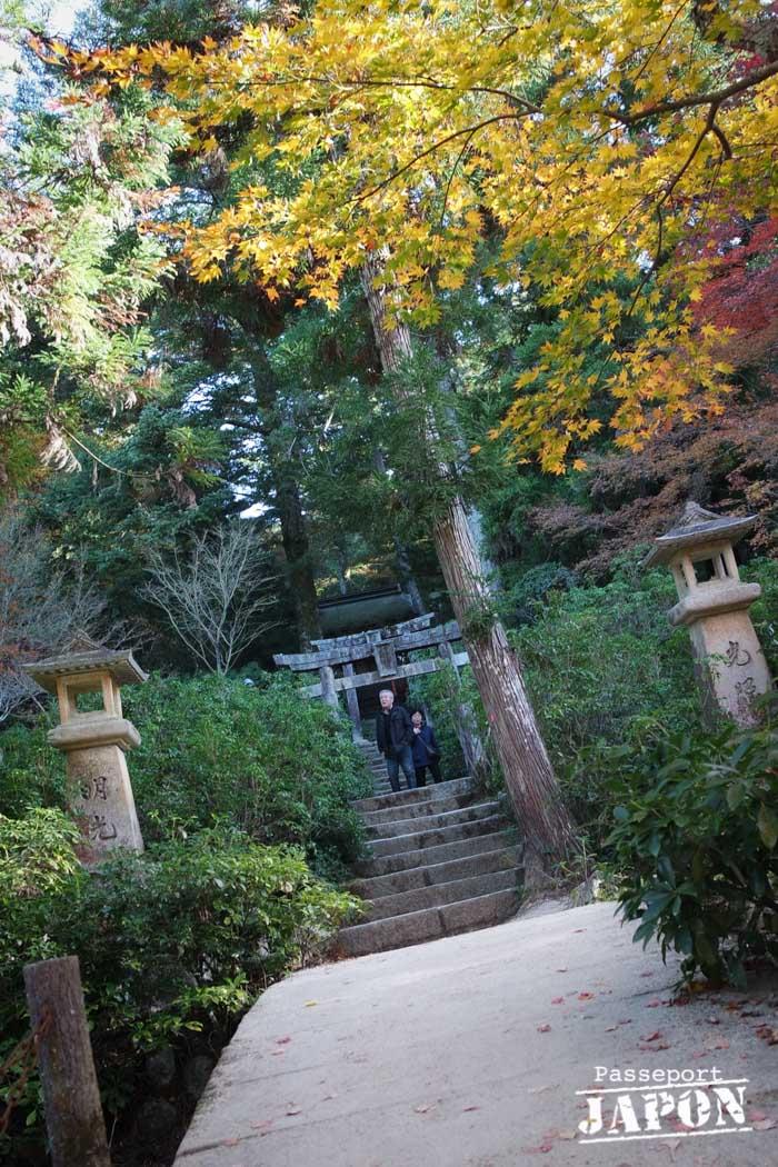 Pont et torii, parc Momijidani, Miyajima, Hiroshima-ken