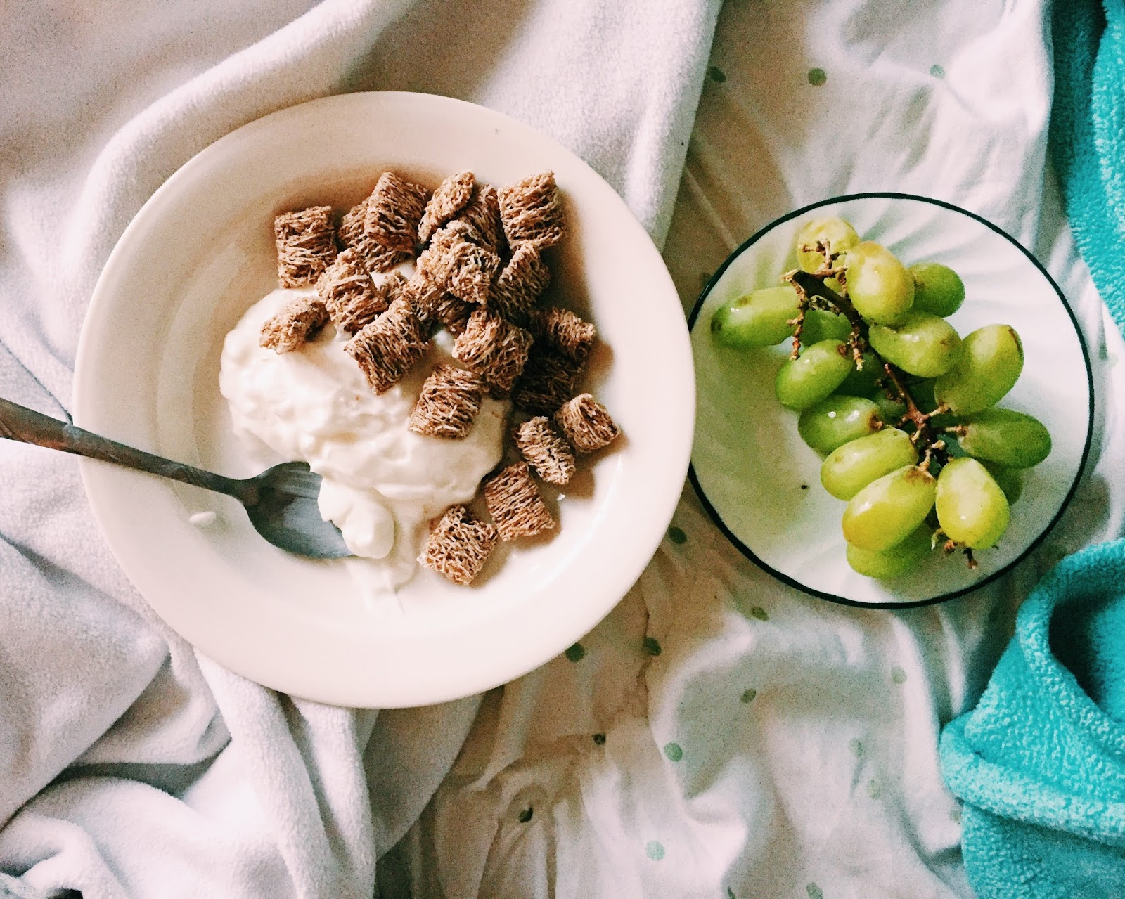 Healthy Living Take 2