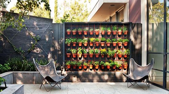taman vertikal menghiasi rumah