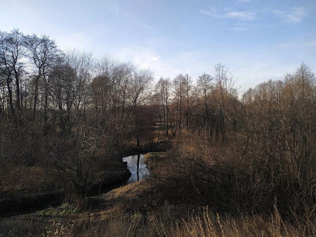 Измайловский парк. Река Серебрянка.