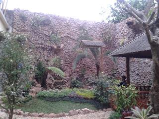 Tukang Taman Bintaro | Murah | Profesional