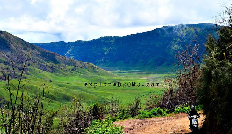 menuju gunung bromo melalui jalur jemplang - wisata alam jawa timur