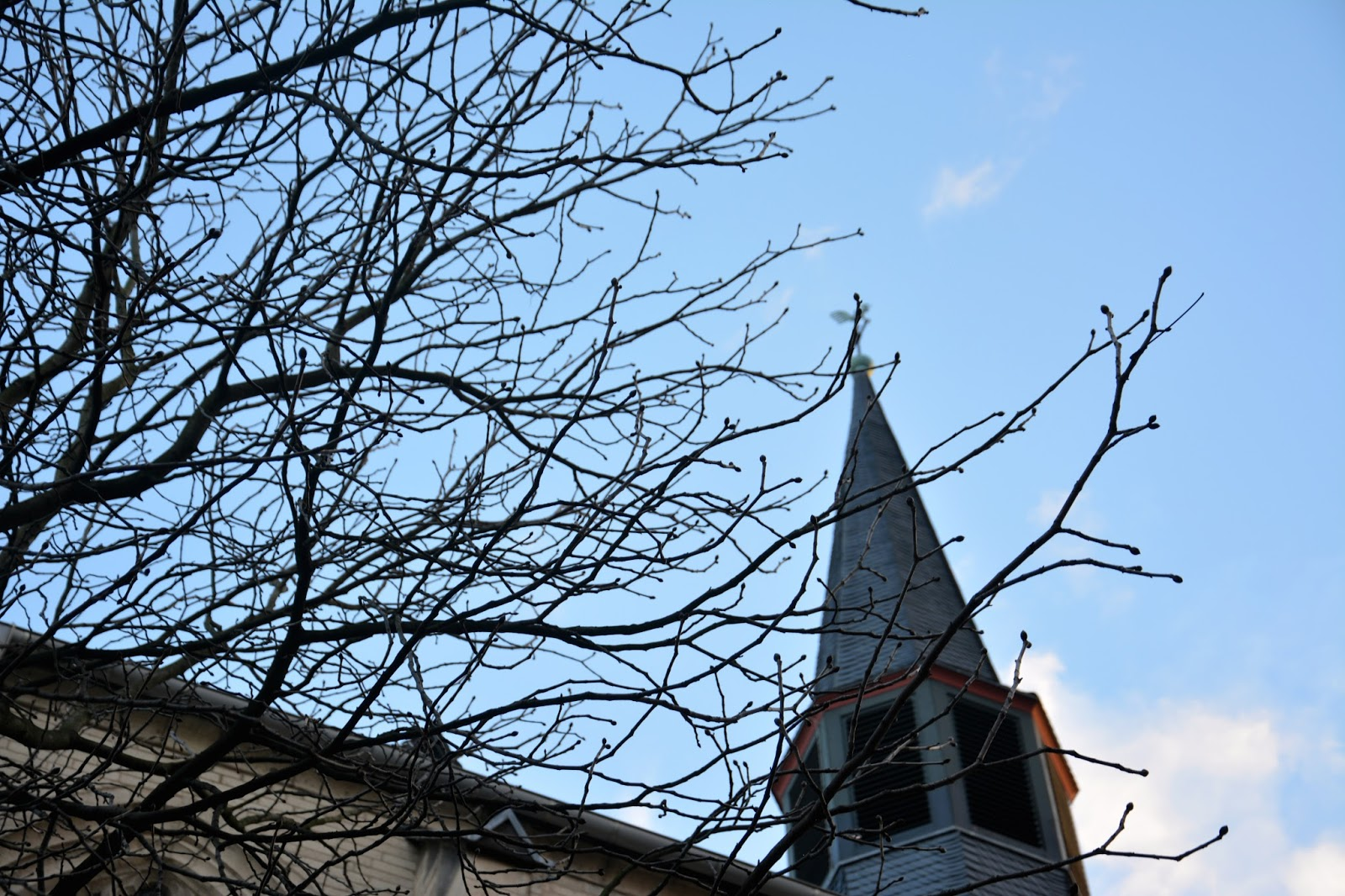 Tree branches in front of church tower on a blue sky