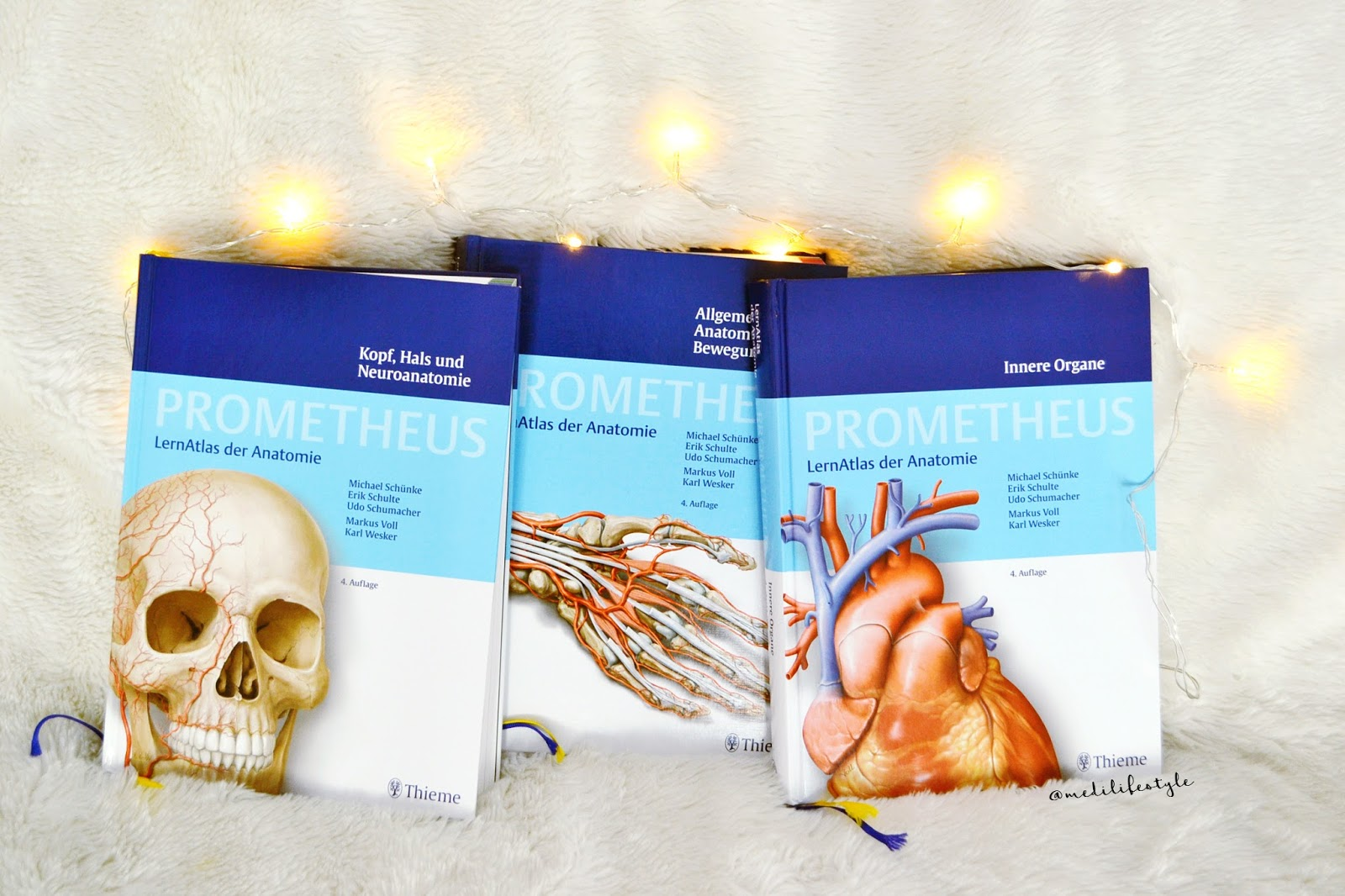 Medilifestyle: How to survive: Anatomie
