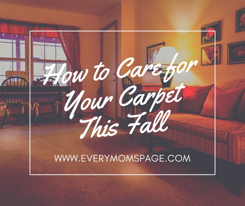 How to Care for Your Carpet This Fall