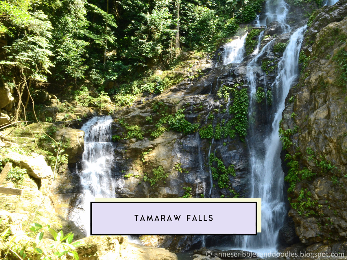 Tamaraw Falls | 7 Must-See Places in Puerto Galera (Vlog, Itinerary, Budget, Where to Stay) | Anne's Scribbles and Doodles