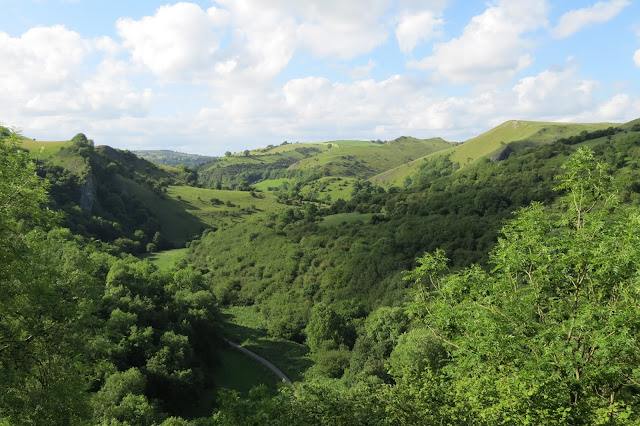 View from above of the Manifold Valley - the path on the valley floor surrounded by tree and grass covered rolling hills.