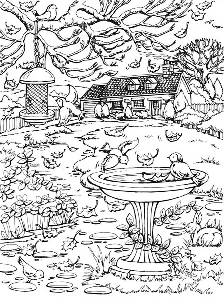 Autumn Scenes Coloring Book For