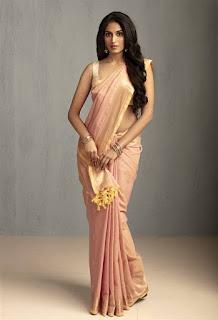 Indian Girl Ananya Ramaprasad Pictureshoot Gallery (3)