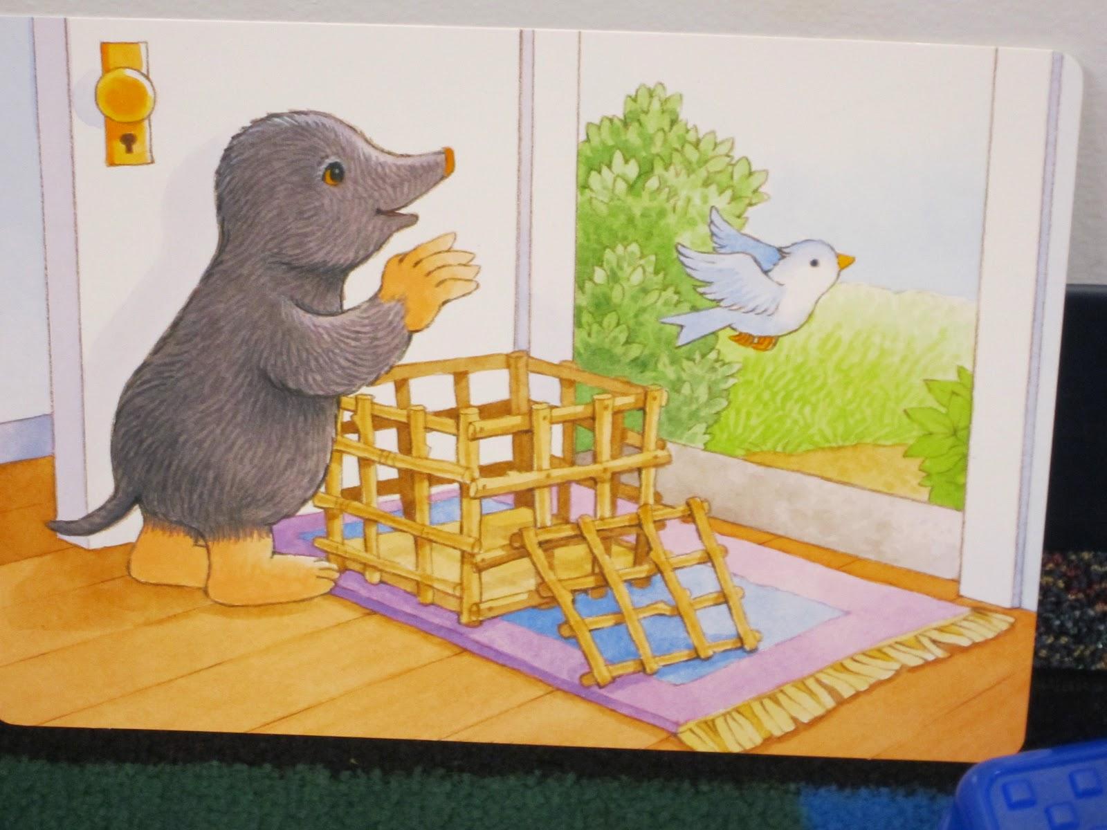 Kindergarten Owls Mole And The Baby Bird