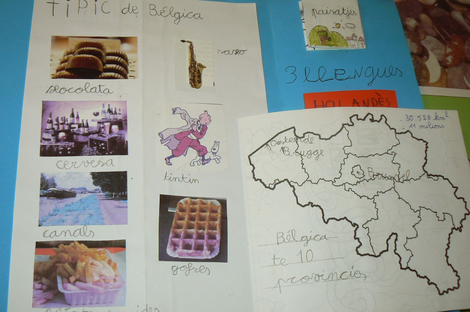 Orca Observar Recordar Crecer Y Aprender Libreta De Dibujo: Orca: Observar, Recordar, Crecer Y Aprender: Lapbook Bélgica