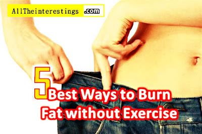 5 Best Ways to Burn Fat without Exercise, Lose Belly fat faster diet tips ideas