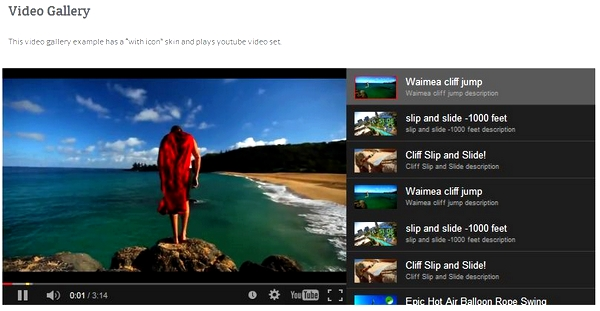 video gallery for WordPress