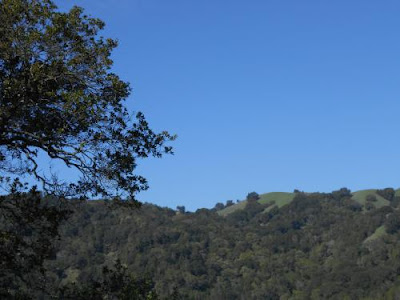 spiritual nature, briones regional park, spiritual awakening, blue sky, green trees