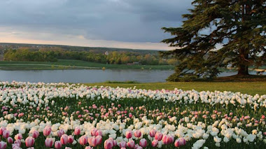 Primavera en el Parque Histórico de Château de Chaumont