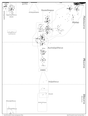 The Genealogical World of Phylogenetic Networks: Plotting
