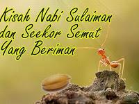 Kisah Nabi Sulaiman dan Seekor Semut Yang Beriman