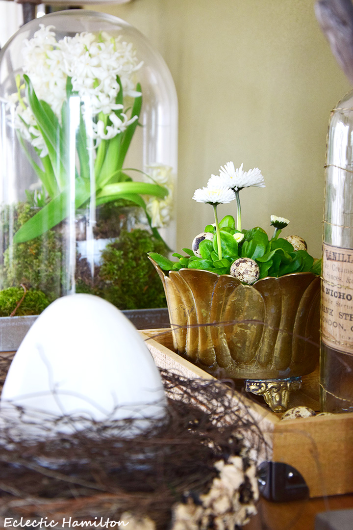 DIY Osterdeko: mit Naturmaterialien wie Moos und Eiern. Schnell, einfach und elegant. Deko für Ostern und Frühling